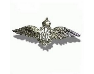 Brooch - RAF Wings