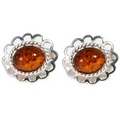 Silver Loop Edged Stud/Amber Earrings