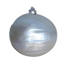 White Mother of Pearl Disc Pendant & Chain