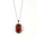 Silver / Amber Pendant and Chain (Signature)